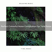 Perfect Colourful Noise Compilation For Total Relax by Sleep & Dream Music Academy