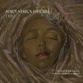 Vidunderlig - Perler fra europeisk sangpoesi by Jørn Simen Øverli