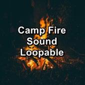 Camp Fire Sound Loopable von Yoga
