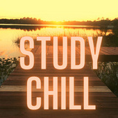 Study Chill fra Various Artists