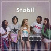 Stabil de Various Artists