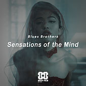 Sensations of the Mind de Blues Brothers