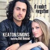 If I Hadn't Forgotten (feat. Didi Benami) - Single by Keaton Simons