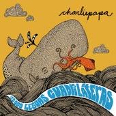 20000 Leguas Cuadriláteras de Charliepapa