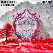 Trippin' by DJ Licious
