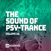 The Sound Of Psy-Trance, Vol. 06 by Various Artists