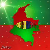 Anton by Carisma Verde