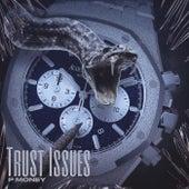 Trust Issues von P-Money