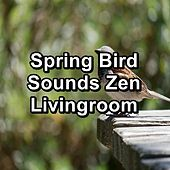 Spring Bird Sounds Zen Livingroom von Yoga Music