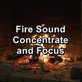 Fire Sound Concentrate and Focus by Ocean Sounds Collection (1)