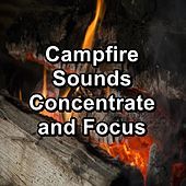 Campfire Sounds Concentrate and Focus by Christmas Hits