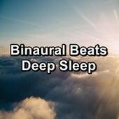 Binaural Beats Deep Sleep von Yoga Music