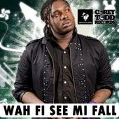 Wah Fi See Mi Fall by Jah Vinci
