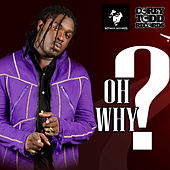 Oh Why by Jah Vinci