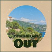 The Surfaris Wipe Out von Various Artists