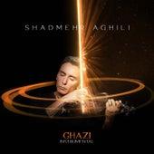 Ghazi (Instrumental) by Shadmehr Aghili