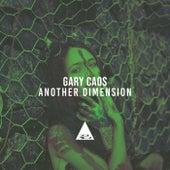 Another Dimension de Gary Caos
