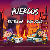PUERCOS by Teo Hp