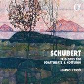 Schubert: Trio Opus 100, Sonatensatz & Notturno de The Busch Trio
