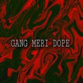Gang Meri Dope von Syrex