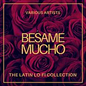 Besame Mucho (The Latin Lo-Fi Collection) by Various Artists