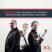 Beethoven: Ghost & Archduke Trios by David Grimal