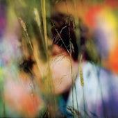 Light Rain Blues by Samamidon