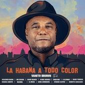 La Habana a Todo Color de Vanito Brown