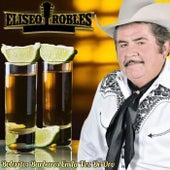 Boleritos Barbaros En La Voz De Oro by Eliseo Robles