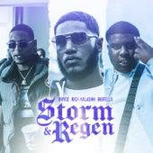 Storm & Regen von Bryce