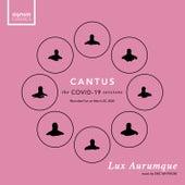 Lux Aurumque (Live) by Cantus