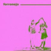 Forronejo de Various Artists