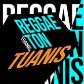 Reggaeton Tuanis von Various Artists