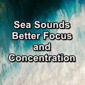 Sea Sounds Better Focus and Concentration von Lullabies for Deep Meditation