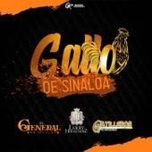 El Gallo de Sinaloa by El General De Sinaloa