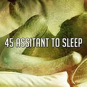 45 Assitant To Sleep von Sleep Sounds of Nature