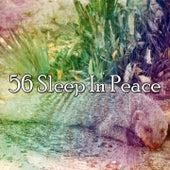 56 Sleep In Peace von S.P.A