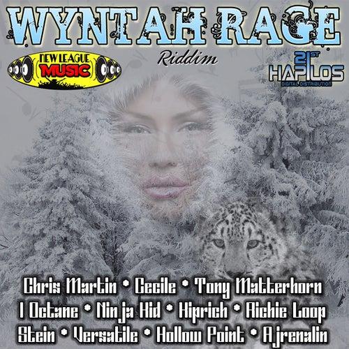 Wyntah Rage Riddim by Various Artists