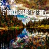 57 Tracks for Peak Serenity von Massage Therapy Music