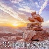 73 Surrounding Serenity von Lullabies for Deep Meditation
