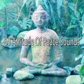 63 Attitude of Peace Sounds von Massage Therapy Music