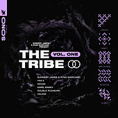 Sunnery James & Ryan Marciano present: The Tribe Vol. One de Sunnery James & Ryan Marciano