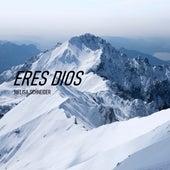 Eres Dios by Melisa Schneider