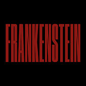 Frankenstein (Joyhauser Mix) de Editors