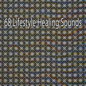 68 Lifestyle Healing Sounds von Massage Therapy Music