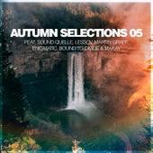 Autumn Selections 05 de Silk Music