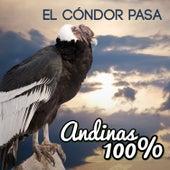 Andinas 100% - el Condor Pasa de German Garcia