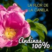 Andinas 100%: La Flor de la Canela de German Garcia