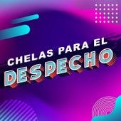 Chelas para el despecho by Various Artists