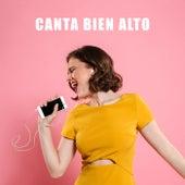 Canta Bien Alto by Various Artists